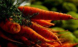 Lax organics standards, gardens on the Gardiner, slaughterhouses self-inspect