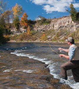 bgs-fishing