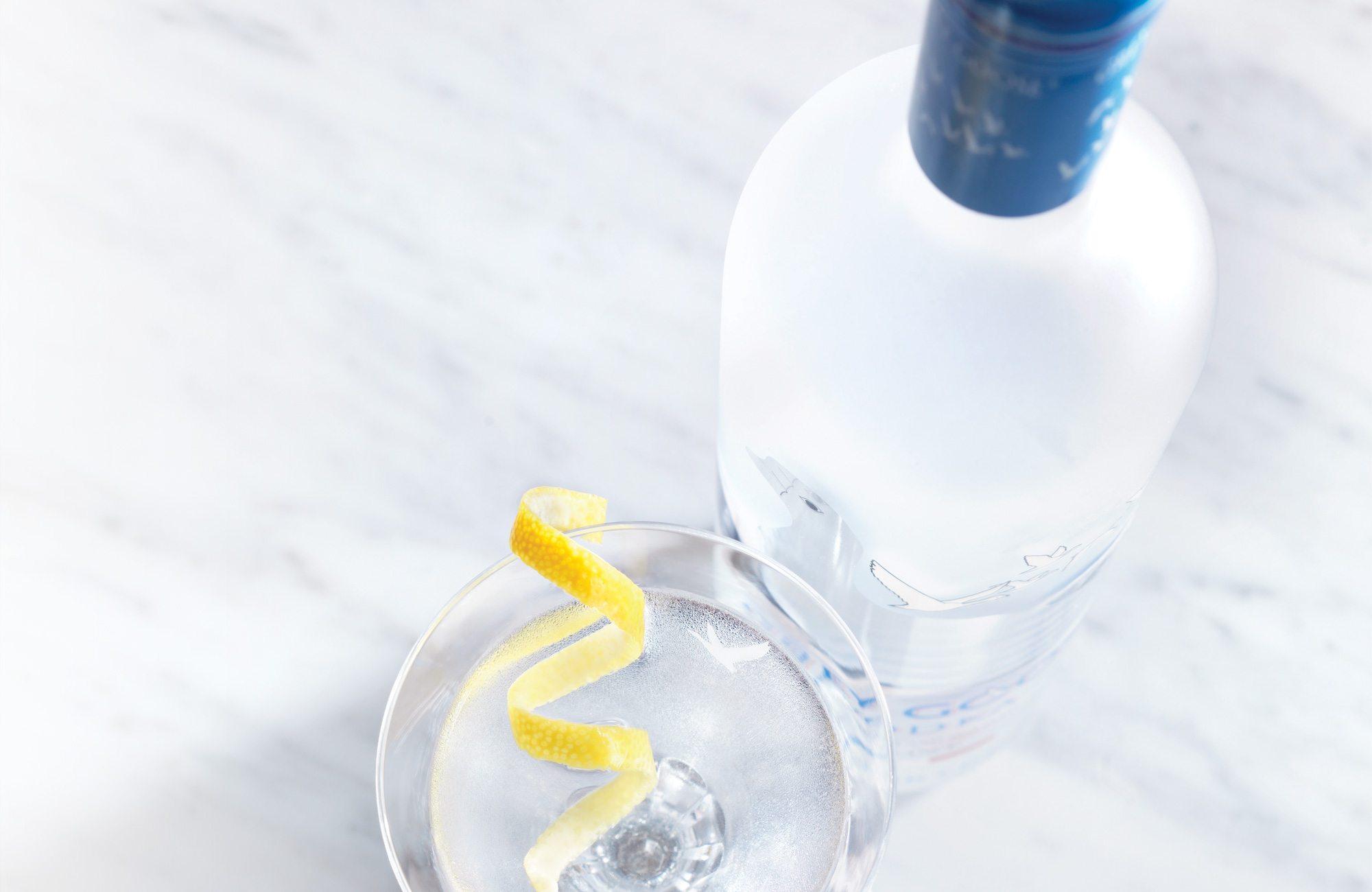 martini-bottle