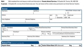 Toronto looking at ending failed pet-licensing program