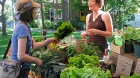 Vendors at Toronto's farmers' markets may get special parking permits