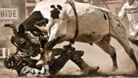 Bull's Eye: Peter Sibbald captures the gritty subculture of southern Ontario rodeos in his superb all-access series, Roughstock
