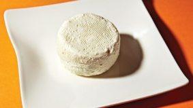 Cheese craft: how to make Pangaea's creamy chèvre at home