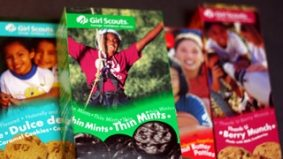 Environmentalism vs. health throwdown: two Girl Scouts launch petition against cookies made with palm oil