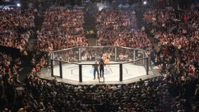 Crane kicks, boorish jeers and one huge hematoma: one fan's night at UFC 129