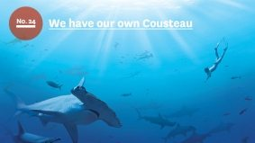 50 Reasons to Love Toronto: No. 24, Rob Stewart is the new Jacques Cousteau