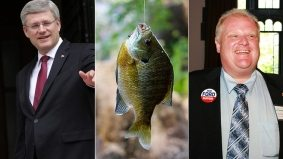PMO killed the YouTube star: fishin' buddies Stephen Harper and Rob Ford (briefly) go viral