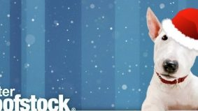 Just in time for winter Woofstock: 20 adorable winter puppies (and one kitty) in the holiday spirit