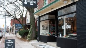 Introducing: The Dog Bowl, an eco-friendly dog boutique for the coolest (and most adorable) doggies on Dundas West