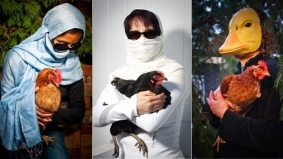 Nine members of Toronto's backyard-chicken underground on the special bond between man and bird