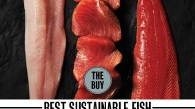 Three top sustainably caught fish (and where to get them in Toronto)