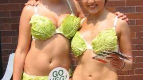 Are lettuce-clad babes what Rob Ford's weight loss challenge needs?