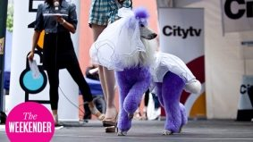 The Weekender: Luminato, Woofstock and six other items on our to-do list