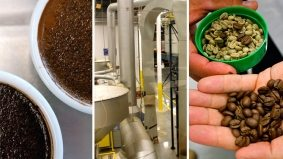 Ever wonder why Tim Hortons coffee tastes like that? A behind-the-scenes tour of their roasting plant