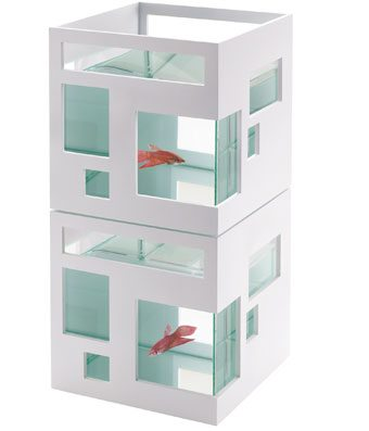 The Find: a condo unit for your pet fish