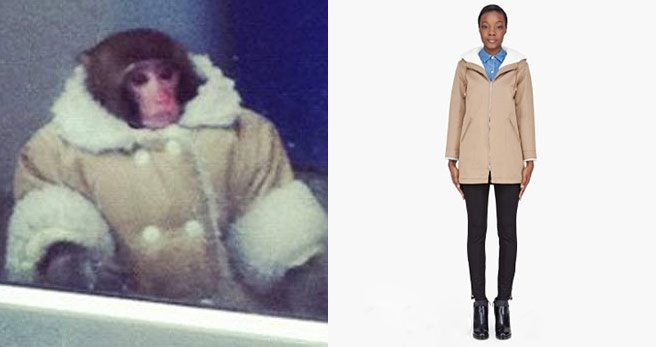 The Find: a coat to make you look as dapper as the Ikea monkey