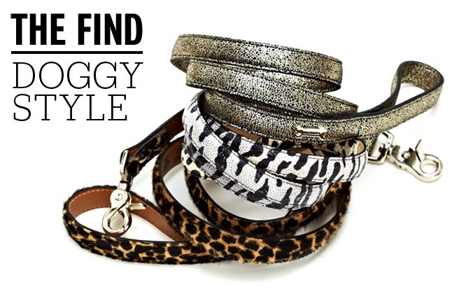 The Find: designer dog accessories that won't blow your budget