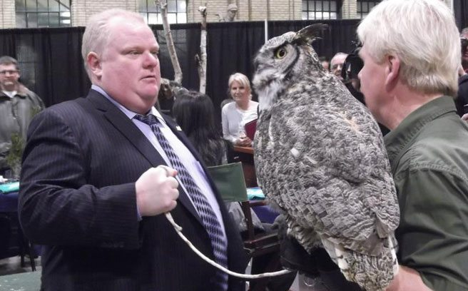 Reaction Roundup: Rob Ford befriends an owl and reporters get excited