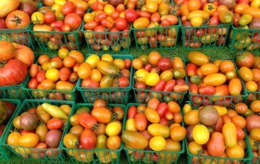 Farmer's Markets Tomatoes