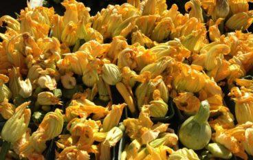 Farmers' Markets Zucchini Blossoms