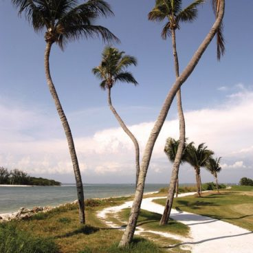 Vacation Homes: Fort Myers Beach, Florida
