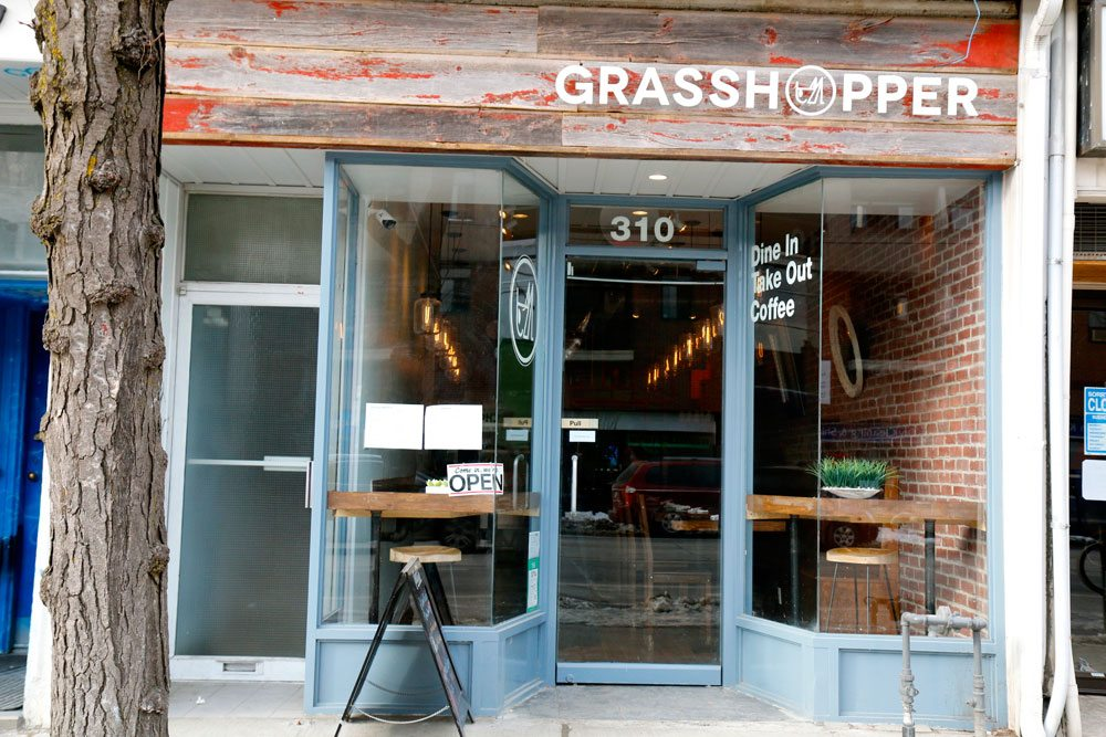 Image result for Grasshopper, Toronto