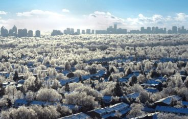 The Ice Age: six remarkable stories from Toronto's holiday ice storm