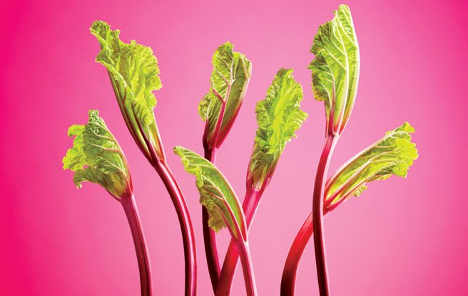 Prep School: Jamie Kennedy shows three ways to cook with sour spring rhubarb