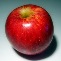 """Doug Ford: """"You can be racist against people that eat little red apples."""""""