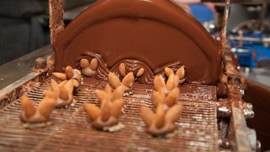 How do you turn raw cocoa beans into picture-perfect truffles?