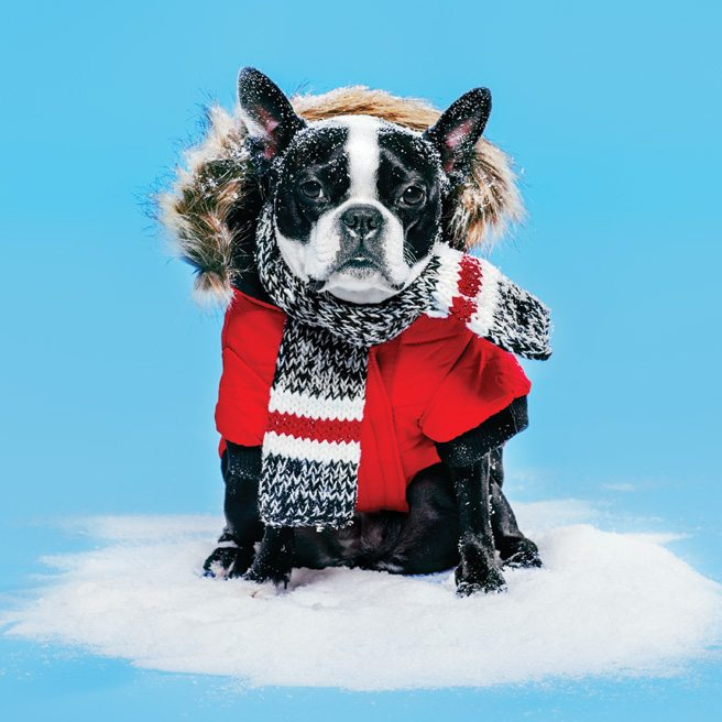 A Winter Hater's Guide to Loving Winter: how to survive the season in style