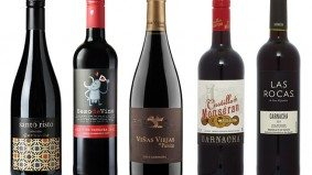 The Reign in Spain: five bottles of garnacha to get you through what's left of winter