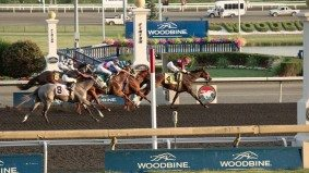 No matter what anyone says, a Woodbine casino would be good for Toronto