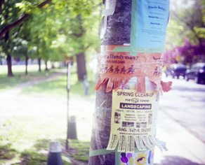 Community posters on a hydro pole
