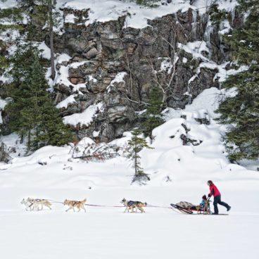 Winter Guide 2015: Dogsledding