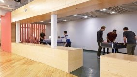 Inside Shopify's Toronto office (where there's an all-dogs-allowed policy)