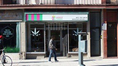 How hard is it to get weed from Toronto's new marijuana dispensaries?
