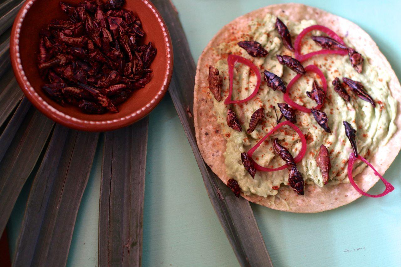 toronto-restaurants-bars-el-rey-mezcal-bar-grant-van-gameren-kensington-market-tostada