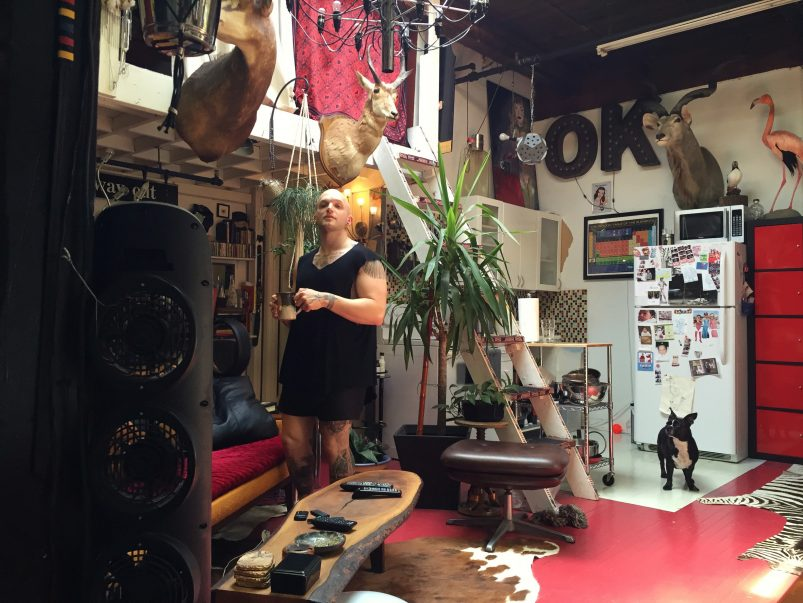 Meet the west ender who has 19 taxidermied animals crammed into his 500-square-foot apartment