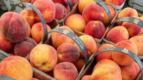 10 great farmers' markets to hit on your way to the cottage