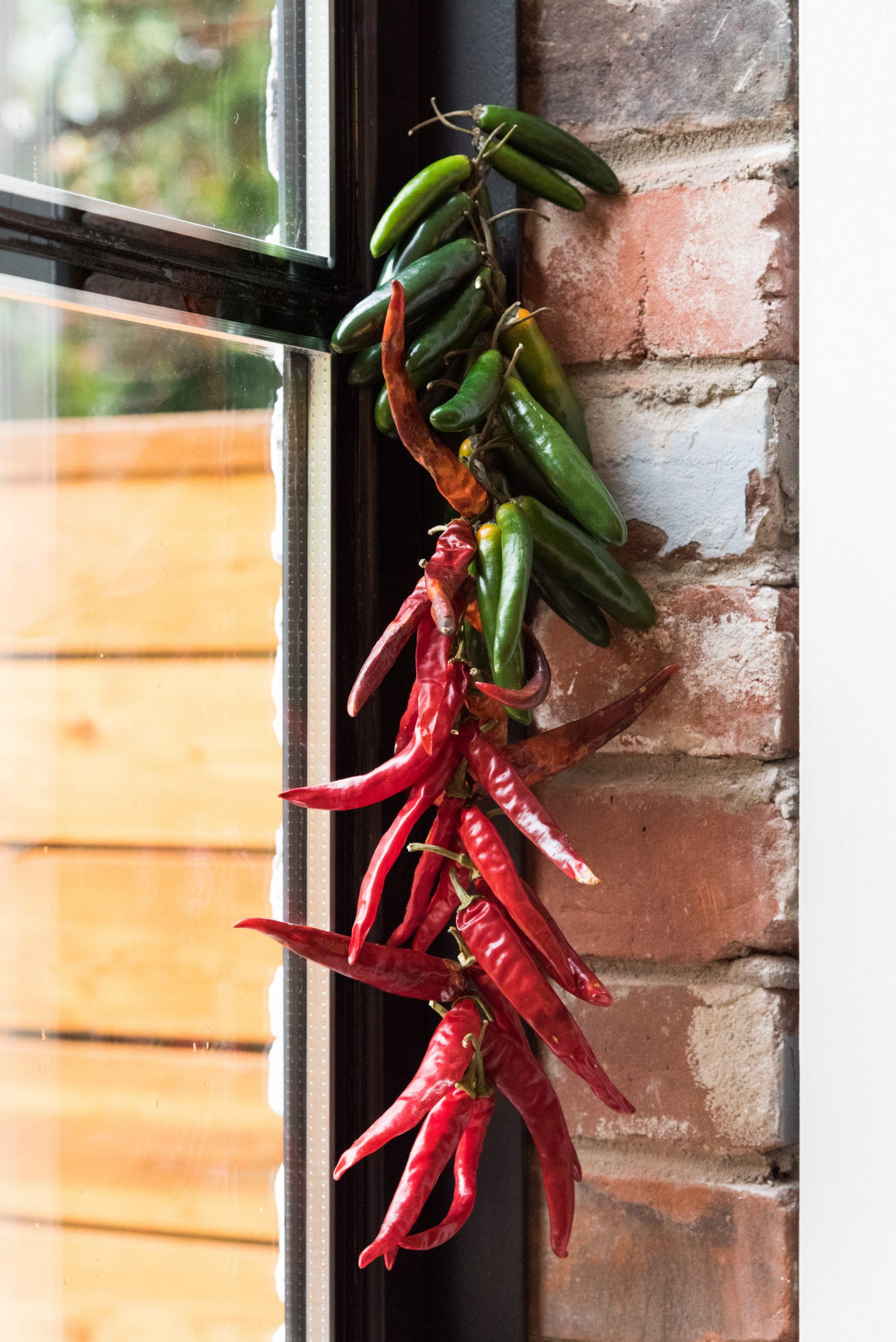 kitchen-diaries-toronto-chefs-at-home-rob-gentile-bar-buca-peppers