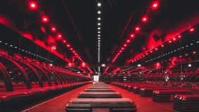 Inside Barry's Bootcamp, the cultish workout studio's first Toronto location