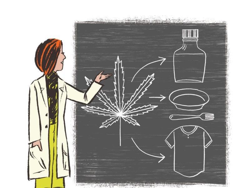 Professors of pot