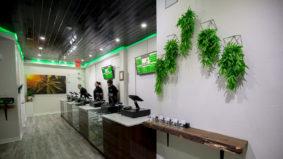 A peek inside Ameri, Toronto's second legal cannabis store