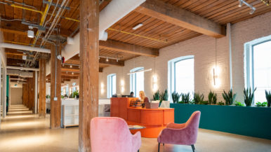 Inside the colourful new office space of Lift & Co., a cannabis education company