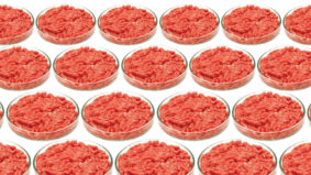 Fake meat doesn't have to cost a fortune