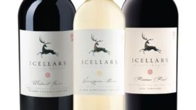 Here's what's inside February's <em>Toronto Life</em> Wine Club box