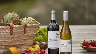 A perfect match: Pairing Bonterra's organic wines with Toronto's top takeout meals