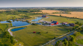 This family Estate is the perfect COVID family compound