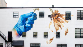 Ten striking new murals honouring front-line workers have popped up across the city